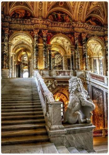 Musei a vienna di arte antica e di arte contemporanea for Palazzo pitti orari